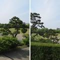 Photos: 金沢城(石川県営 金沢城公園)新丸