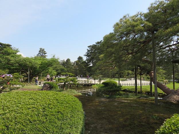 Photos: 兼六園(金沢市)
