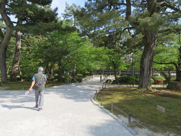 兼六園(金沢市)花見橋