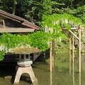 兼六園(金沢市)瓢池