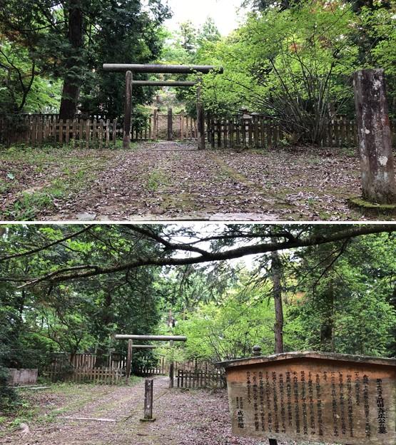 Photos: 加賀藩前田家墓所(金沢市 野田山墓地)12代前田齊廣墓