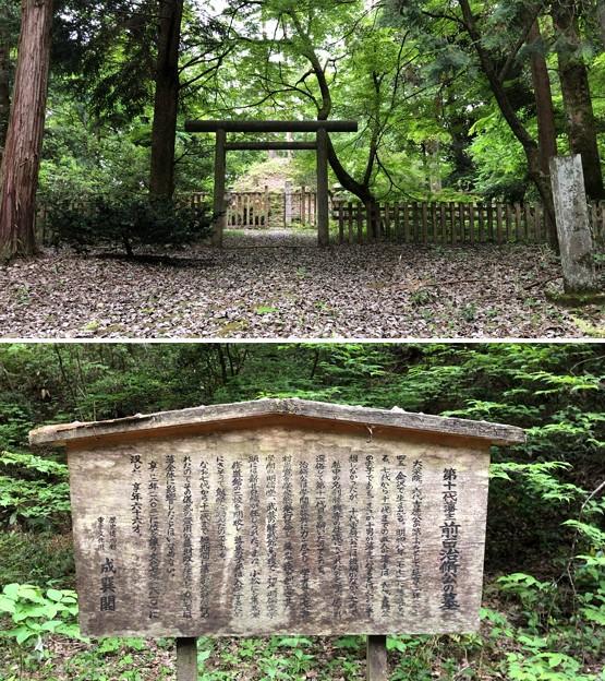 加賀藩前田家墓所(金沢市 野田山墓地)11代前田治脩墓