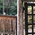 加賀藩前田家墓所(金沢市 野田山墓地)3代利常4女 富子墓