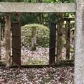 Photos: 加賀藩前田家墓所(金沢市 野田山墓地)6代吉徳側室 以與墓
