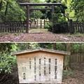 加賀藩前田家墓所(金沢市 野田山墓地)8代前田重煕墓