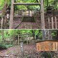 Photos: 加賀藩前田家墓所(金沢市 野田山墓地)3代利常正室墓