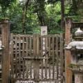 Photos: 加賀藩前田家墓所(金沢市 野田山墓地)14代慶寧側室 梃秀墓