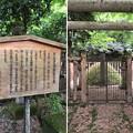 加賀藩前田家墓所(金沢市 野田山墓地)13代斉泰正室墓