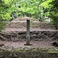 Photos: 加賀藩前田家墓所(金沢市 野田山墓地)前田利家墓