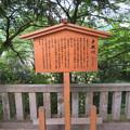 白山比咩神社(白山市)見えない手取川