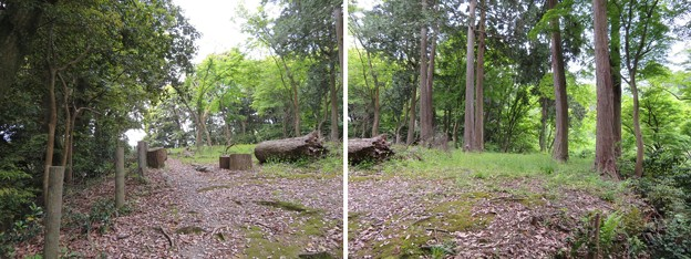 Photos: 大聖寺城(石川県加賀市)東丸腰郭