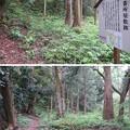 Photos: 大聖寺城(石川県加賀市)番所屋敷