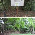 大聖寺城(石川県加賀市)鐘が丸櫓台・土塁・骨が谷