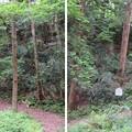 大聖寺城(石川県加賀市)局谷(横堀)