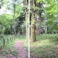 大聖寺城(石川県加賀市)二の丸
