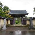 称念寺(坂井市丸岡町)山門