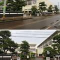 Photos: 丸岡城(福井県坂井市)大手門跡