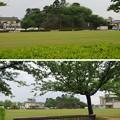 丸岡城(福井県坂井市)二の丸跡
