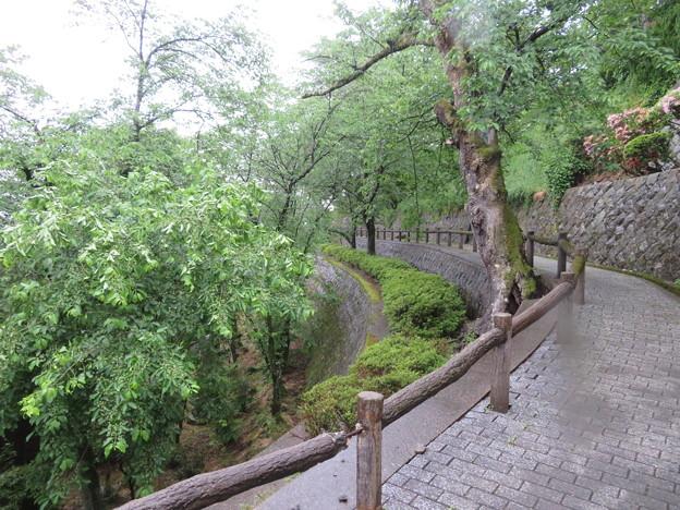 丸岡城(福井県坂井市)