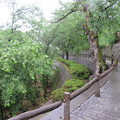 Photos: 丸岡城(福井県坂井市)