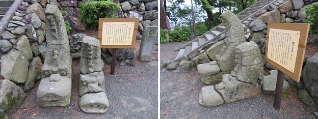 丸岡城(福井県坂井市)石製鯱
