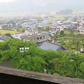 Photos: 丸岡城天守(福井県坂井市)二の丸跡
