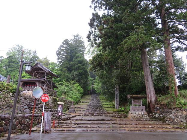 Photos: 白山平泉寺旧境内(勝山市)