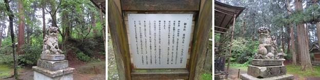 Photos: 平泉寺白山社舊址(勝山市)本殿