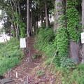 Photos: 戌山城(大野市)みくら清水登城口