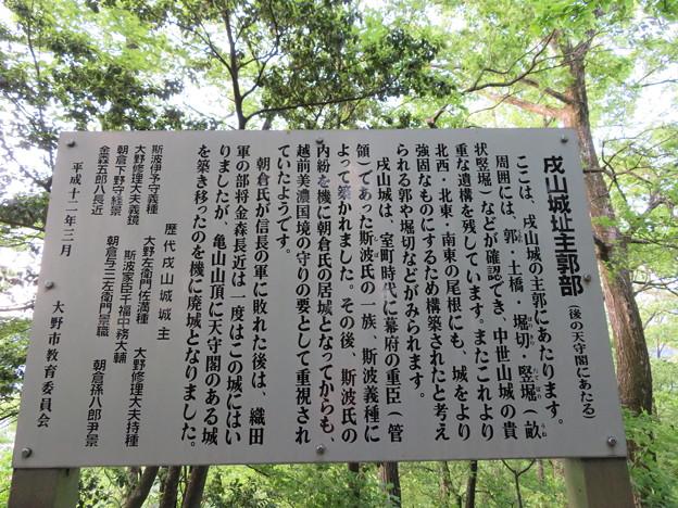 Photos: 戌山城(大野市)本郭