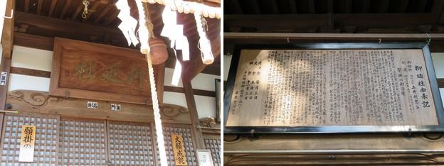 大野城/柳廼社(大野市)拝殿