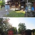 大野城/柳廼社(大野市)大野市民俗資料館