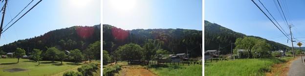 一乗谷(福井市)一乗谷城