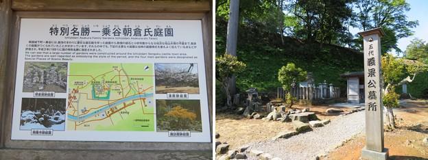 一乗谷(福井市)朝倉義景館跡(朝倉館)