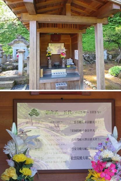 一乗谷(福井市)朝倉五代仏壇