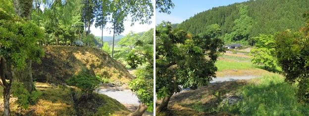 一乗谷(福井市)諏訪館跡庭園