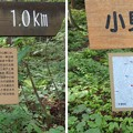Photos: 一乗谷城(福井市)小見放城