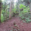 Photos: 一乗谷城(福井市)一乗城山馬出ルート