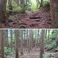 Photos: 一乗谷城(福井市)郭