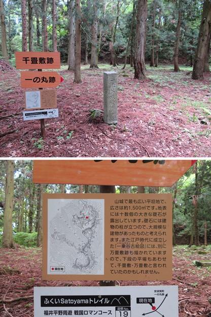 Photos: 一乗谷城(福井市)千畳敷跡