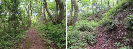 一乗谷城(福井市)一の丸空堀