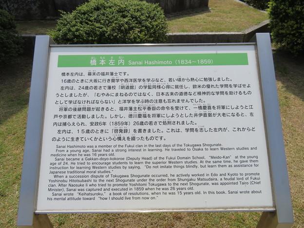 橋本左内像(福井市営 左内公園)