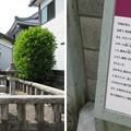 総光寺(福井市)丹羽長秀・次男 長正墓