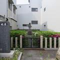 Photos: 初代康継(刀工)墓(福井市)