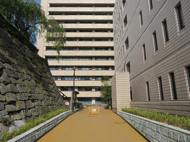 福井城(福井市)本丸