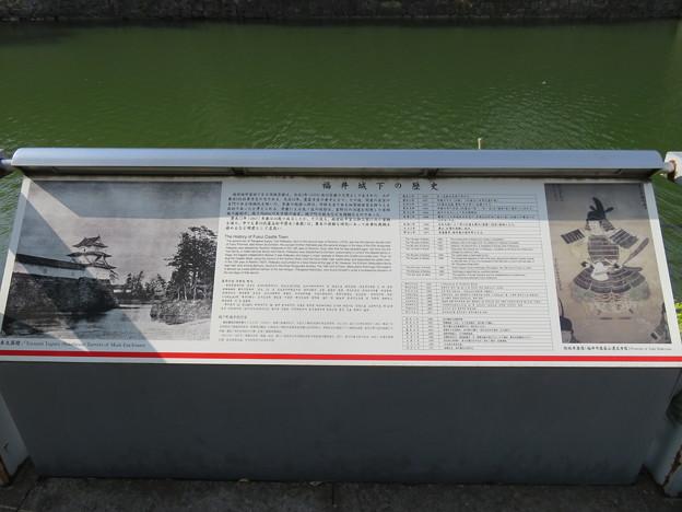Photos: 福井城(福井市)内堀