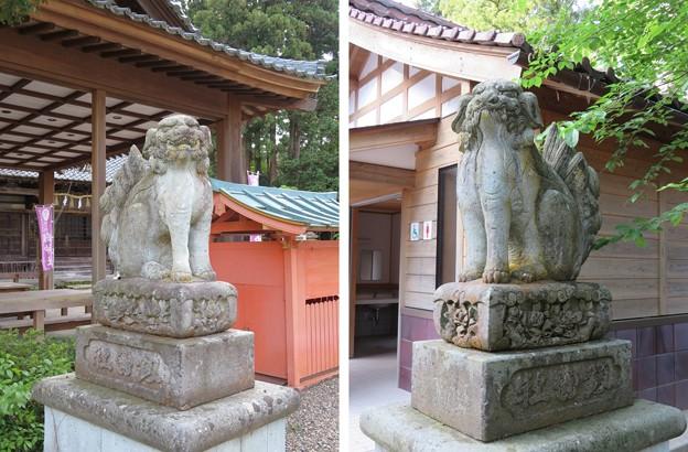 劔神社(越前町)