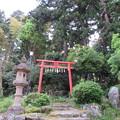 Photos: 劔神社(越前町)水木稲荷