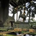 劔神社(越前町)手水場