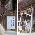 劔神社(越前町)織田神社